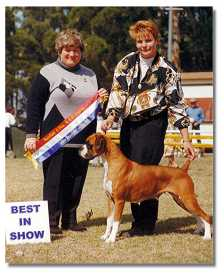 Ch.Taratan Free Sally winning Best in Show