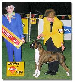 Ch.Taratan Lady is a Tramp winning RU in Show
